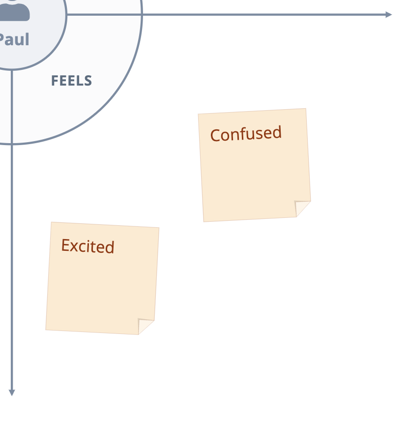 examples of inputs in the feels quadrant of the customer empathy map