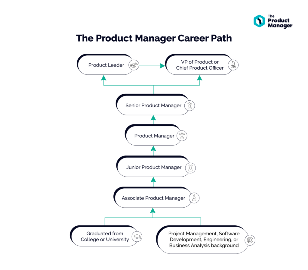 flowchart following the career path of a product manager from entry level positions all the way to more senior positions